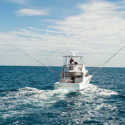 pescadora-2-650