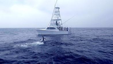 One More Sportfishing